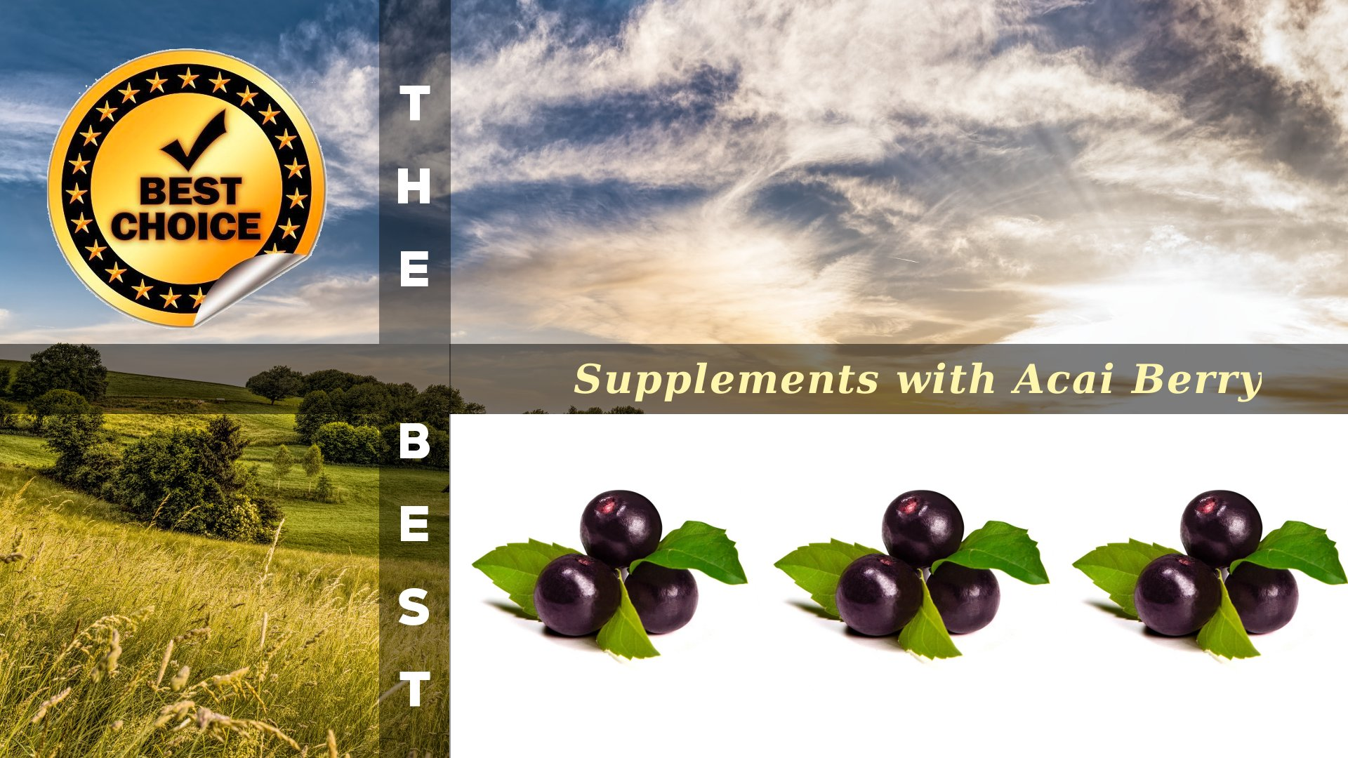 The Supplements with Acai Berry