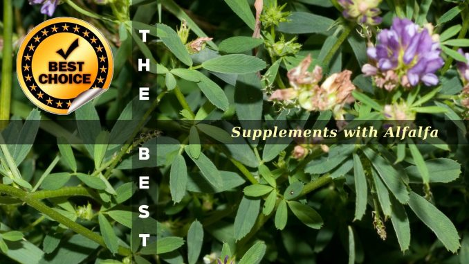 The Supplements with Alfalfa