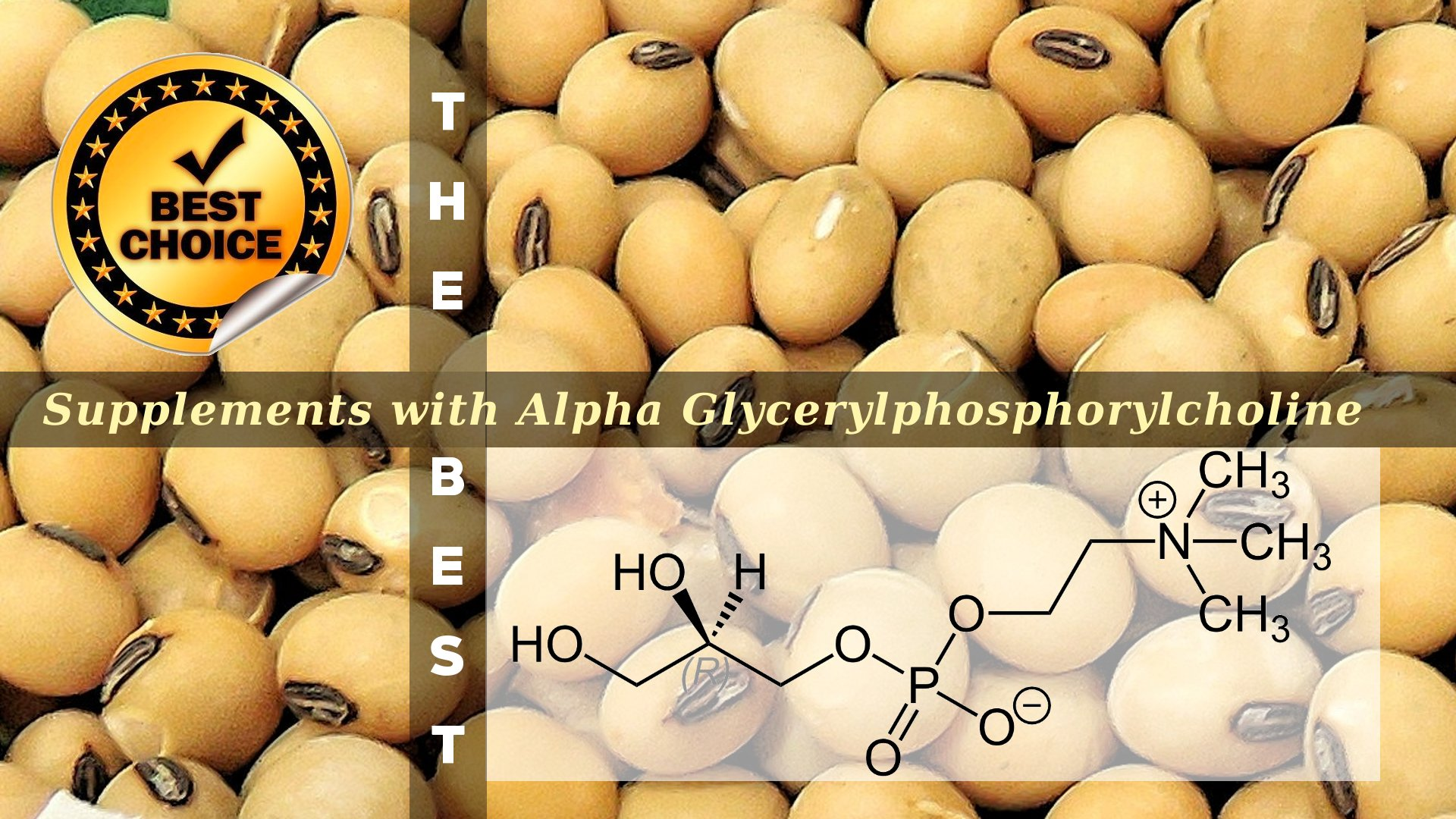 The Supplements with Alpha Glycerylphosphorylcholine