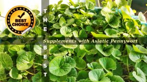The Supplements with Asiatic Pennywort