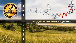 The Supplements with Cognizine