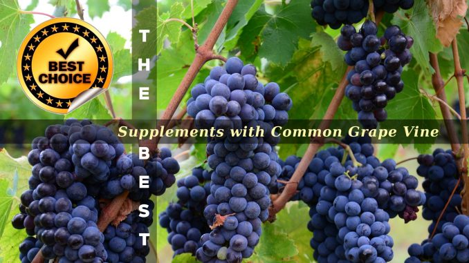 The Supplements with Common Grape Vine