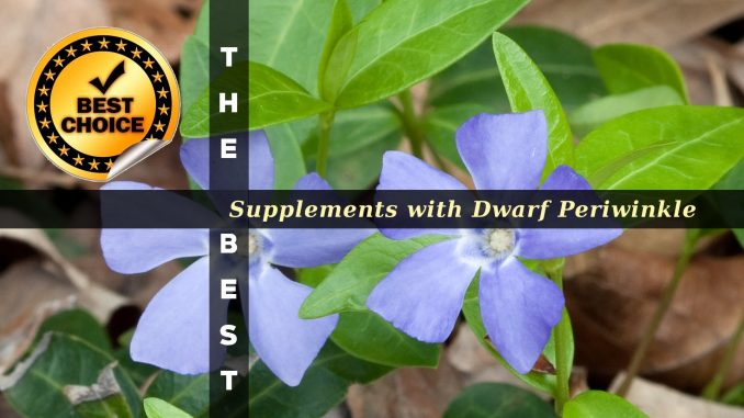 The Supplements with Dwarf Periwinkle