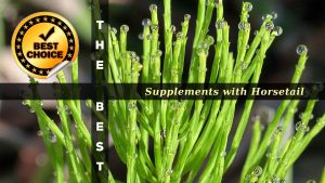 The Supplements with Horsetail