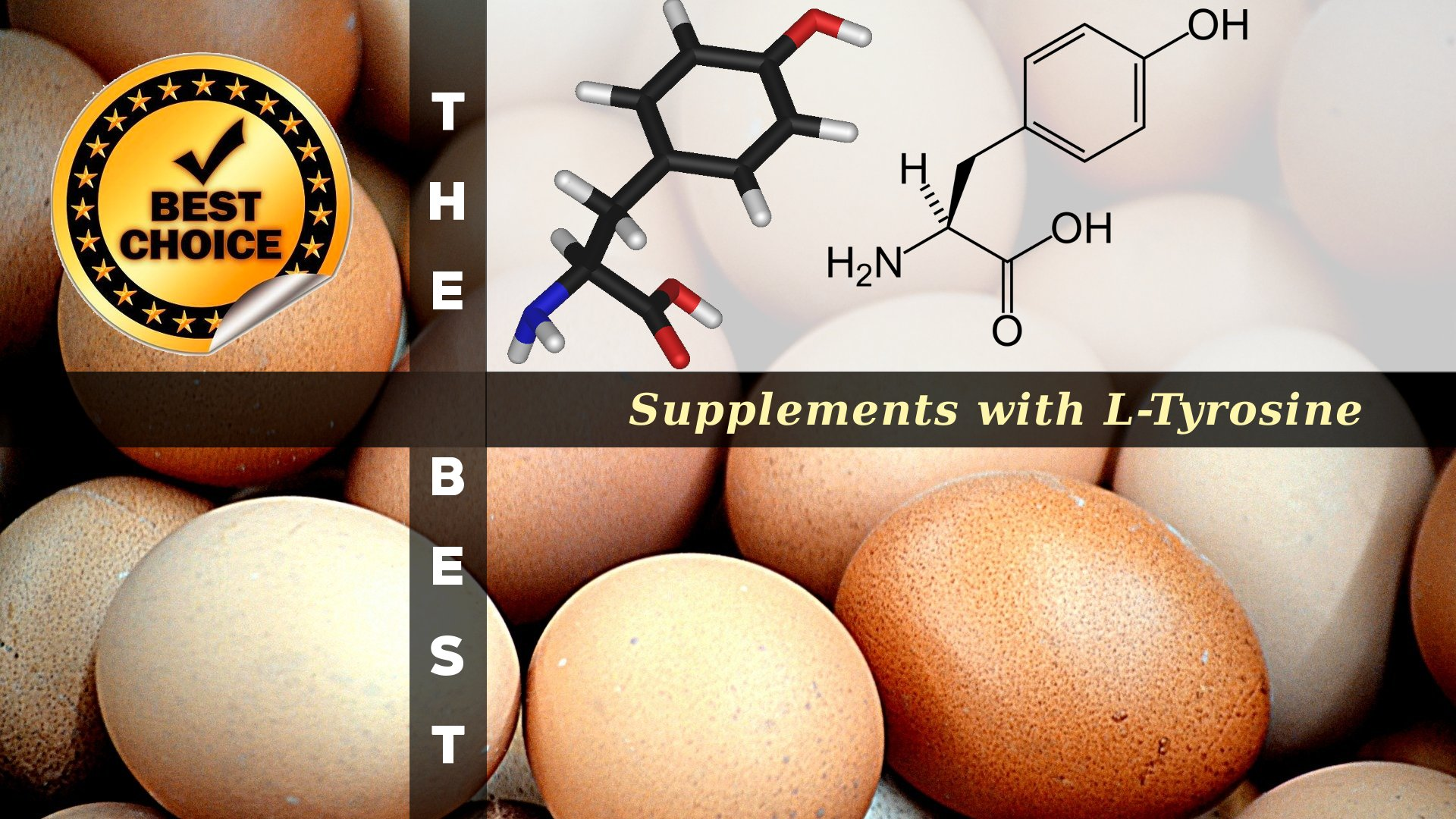 The Supplements with L-Tyrosine