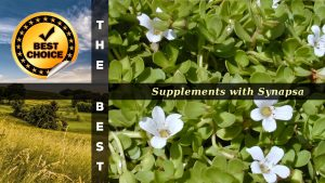 The Supplements with Synapsa