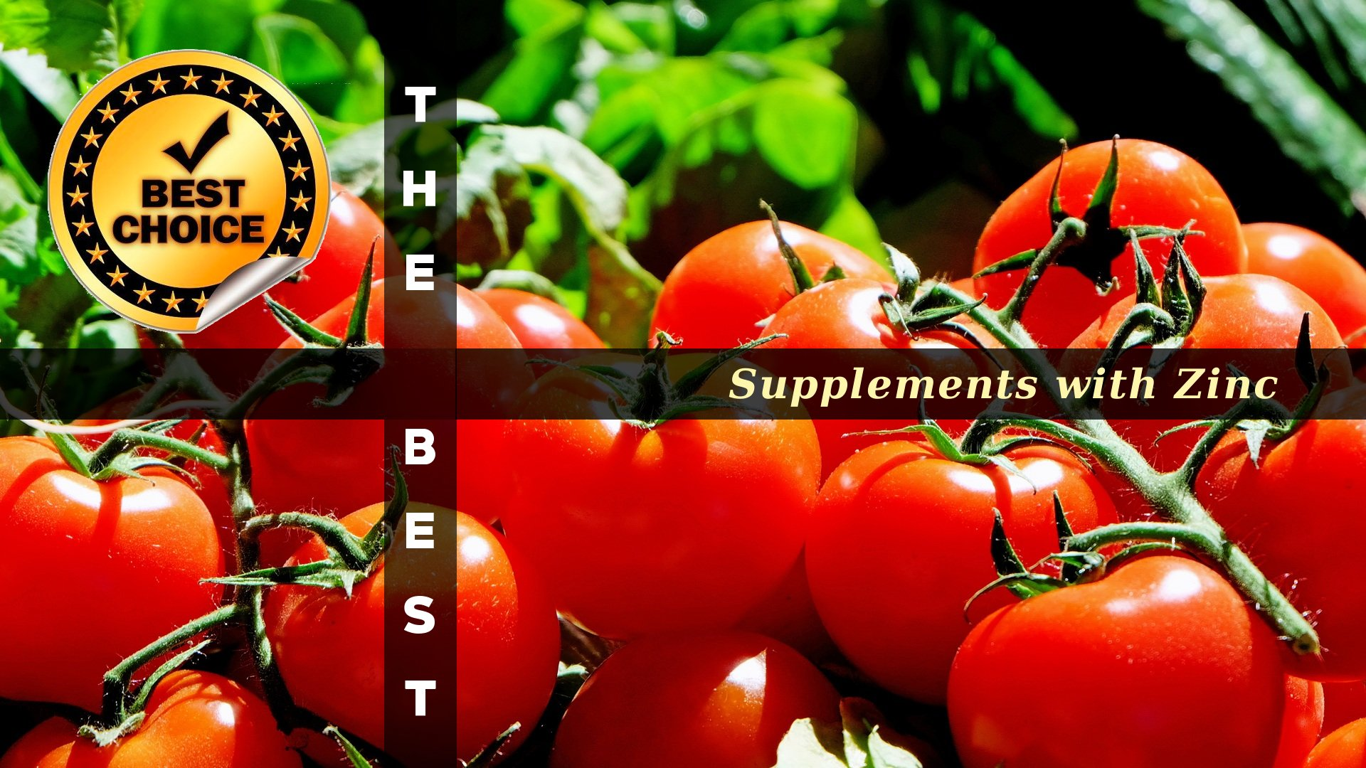 The Supplements with Zinc