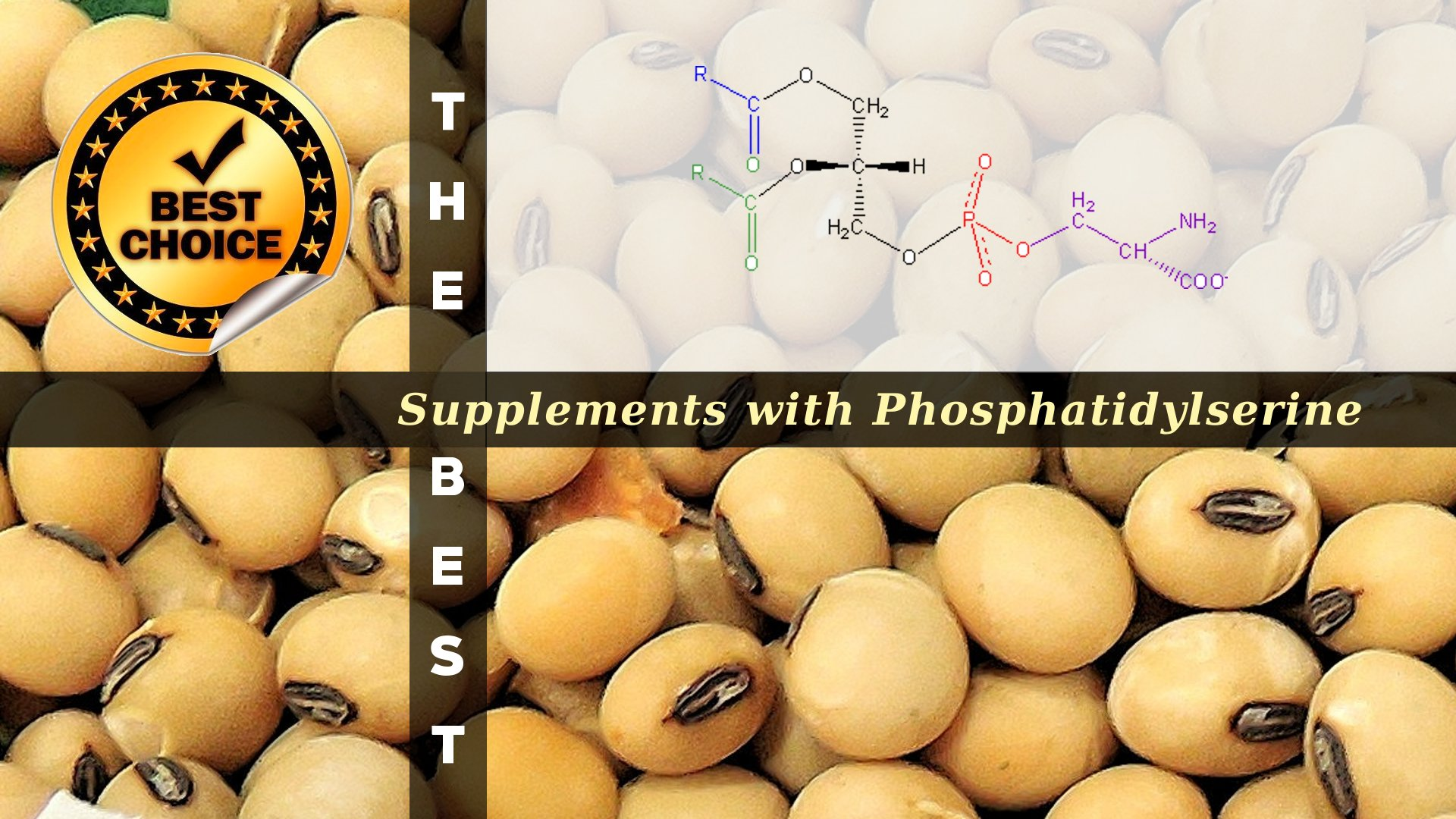The Supplements with Phosphatidylserine