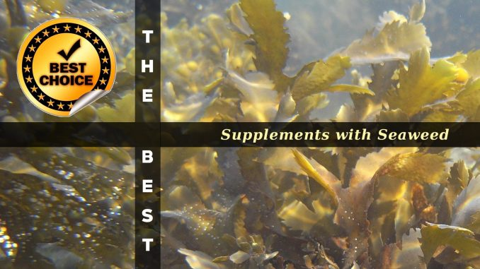 The Supplements with Seaweed