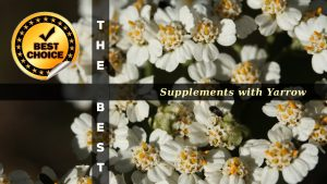 The Supplements with Yarrow
