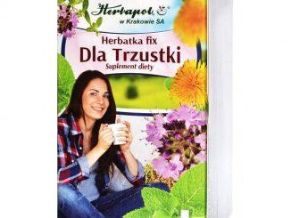 Herbatka Dla trzustki, fix, 2 g, 20 szt. / (Herbapol Krakow)
