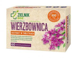 Wierzbownica, tabletki powlekane, 60 szt. / (Doz)