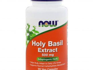 Holy Basil Extract, 500 mg, 90 Veg Capsules (Now Foods)