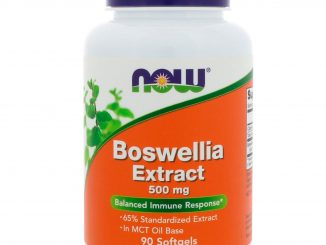 Boswellia Extract, 500 mg, 90 Softgels (Now Foods)